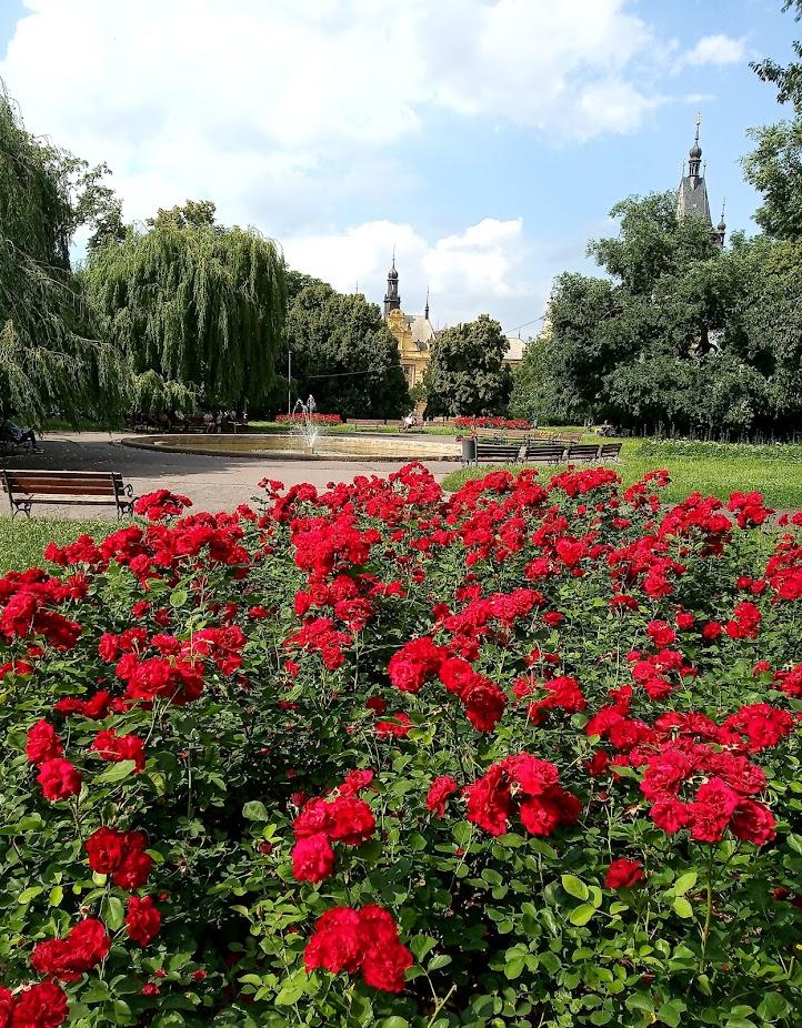 Park - Karlovo náměstí, Praha