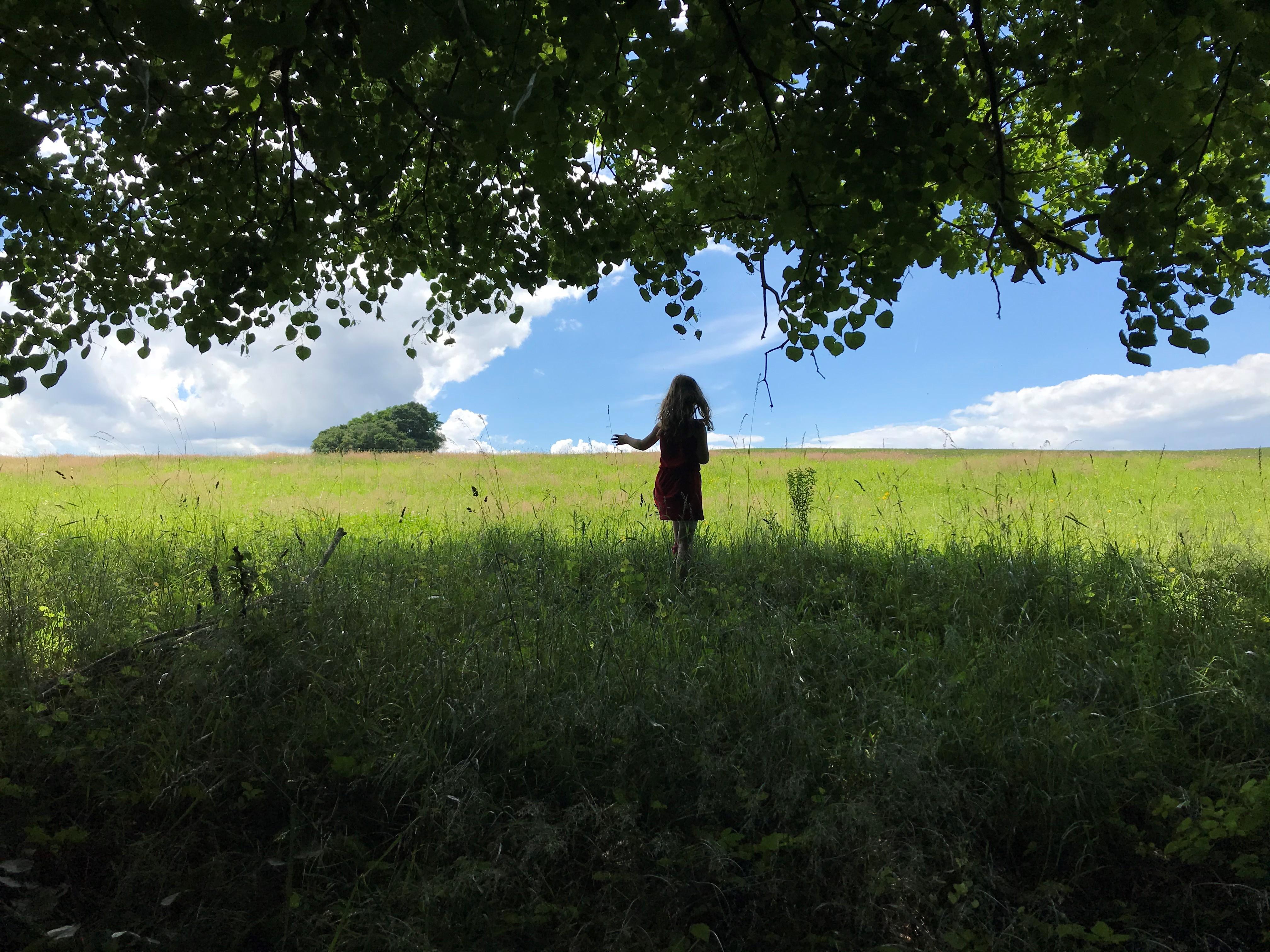 bosou nohou v trave